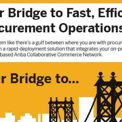 SAP Infographic Ariba